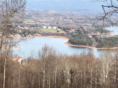 Towns County Single Family Home For Sale: 799 Ramey Mountain Road