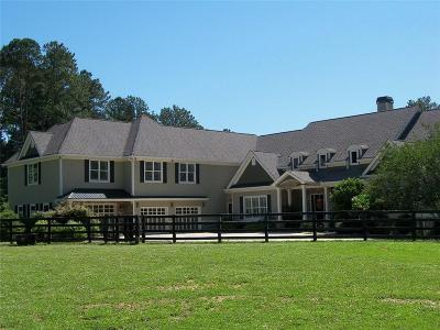 Cherokee County Single Family Home For Sale: 16289a Clarity Road