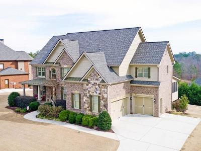 Flowery Branch Single Family Home For Sale: 4537 Grandview Parkway