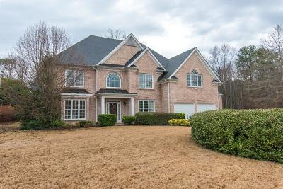 Snellville Single Family Home For Sale: 1845 Brandie Elaine Avenue