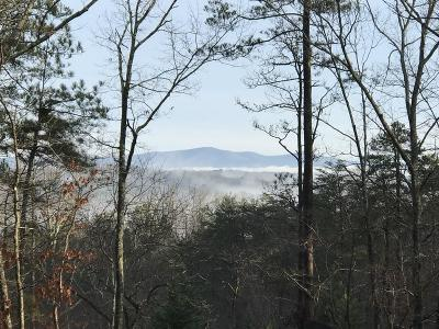 Cherokee County Single Family Home For Sale: 1551 Howell Bridge Road