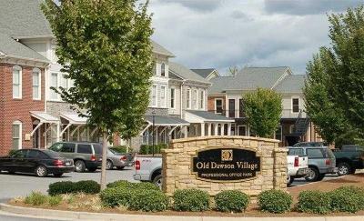 Dawson County Commercial For Sale: 1120 Old Dawson Village Road E #20