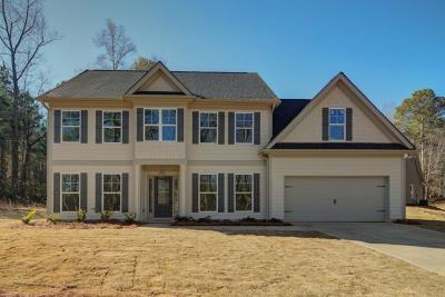 Dawsonville Single Family Home For Sale: 569 Brookwood Drive W