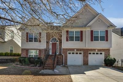 Snellville Single Family Home For Sale: 4030 Preserve Lane