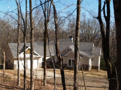 Dawson County Single Family Home For Sale: 519 Lower Sassafras Mountain Parkway