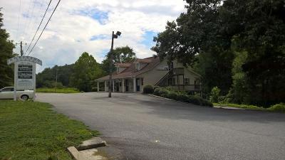 Lumpkin County Commercial For Sale: 5738 S Chestatee