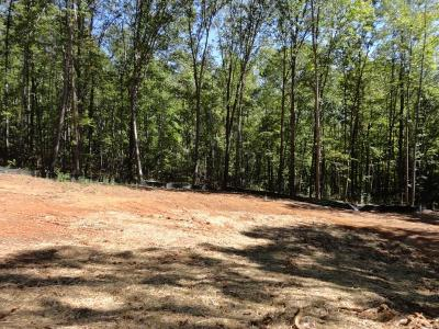 Dawsonville Residential Lots & Land For Sale: 456 Smith Circle