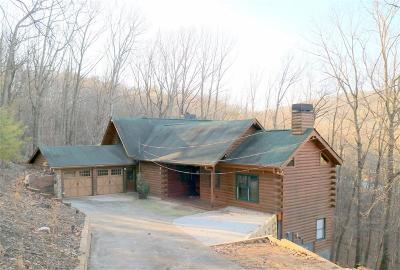 Jasper GA Single Family Home For Sale: $379,000