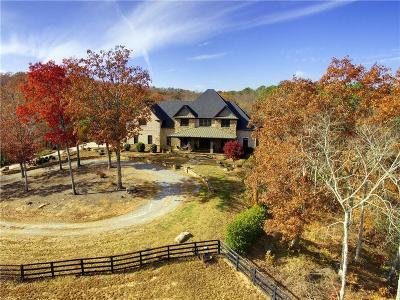 Waleska Single Family Home For Sale: 7945 Reinhardt College Parkway