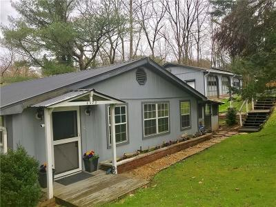 Ellijay Single Family Home For Sale: 4573 Big Creek Road