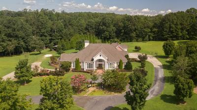 Dawsonville Single Family Home For Sale: 204 Carsons Creek Drive
