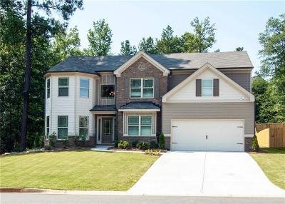 Flowery Branch Single Family Home For Sale: 89 Park Place Drive