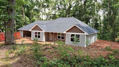 Dawsonville Single Family Home For Sale: 13 Emmett Drive #13