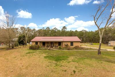 Palmetto Single Family Home For Sale: 8500 Chastain Road