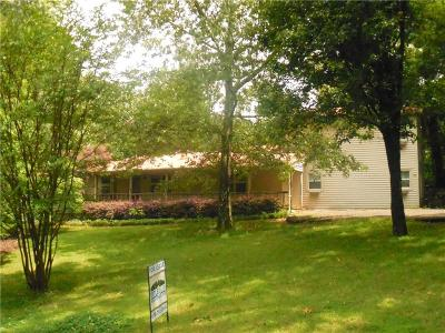 Canton Single Family Home For Sale: 917 Sardis Road