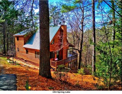 Ellijay Single Family Home For Sale: 194 Spring Lake Drive