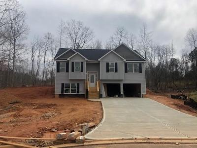 Rockmart Single Family Home For Sale: 273 White Creek Dr