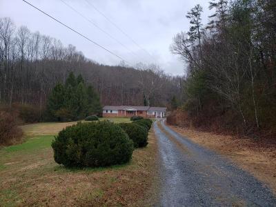 Ellijay Single Family Home For Sale: 9772 Elliott Family Parkway