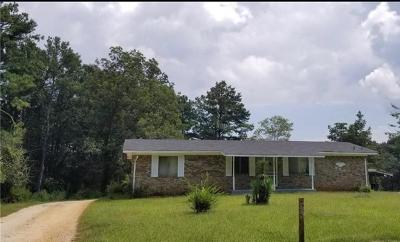 Lithia Springs Single Family Home For Sale: 956 County Line Road