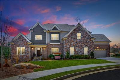 Marietta Single Family Home For Sale: 1195 Lincoln Drive
