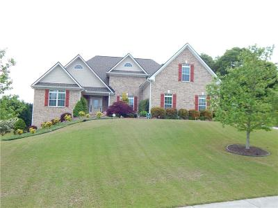 Loganville Single Family Home For Sale: 500 Sandy Cove Drive