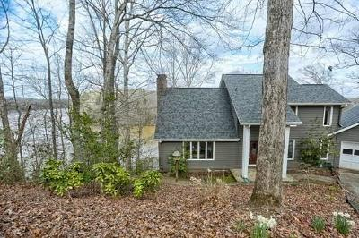 Dawson County Single Family Home For Sale: 537 Chestatee View Drive