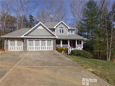Ellijay Single Family Home For Sale: 606 The Oaks Drive