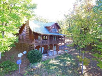 Lumpkin County Single Family Home For Sale: 305 Ranch Mountain Drive
