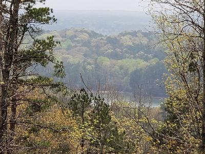 Cartersville Residential Lots & Land For Sale: 21 Signal Mtn Drive SE
