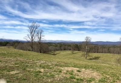 Dawsonville GA Residential Lots & Land For Sale: $1,950,000