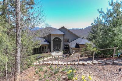 Blairsville Single Family Home For Sale: 55 Raintree Lane