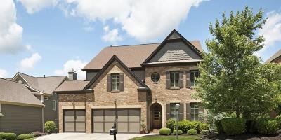 Suwanee Single Family Home For Sale: 3265 Camellia Lane