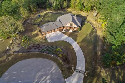 Buford Single Family Home For Sale: 3537 S Puckett Road