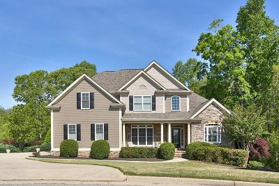 Dawsonville Single Family Home For Sale: 7380 Sawgrass Drive