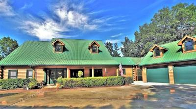 Rabun County Single Family Home For Sale: 586 Westwind Trail