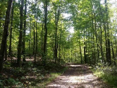 Douglas County Residential Lots & Land For Sale: 4100 Reynolds Road