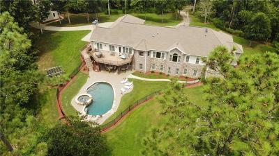 Alpharetta Single Family Home For Sale: 16280 New Bullpen Road