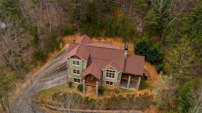 Ellijay Single Family Home For Sale: 381 Laurel Ridge Drive
