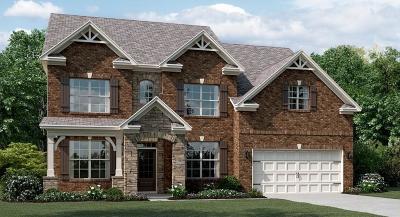 Snellville Single Family Home For Sale: 2959 Brook Oak Trace