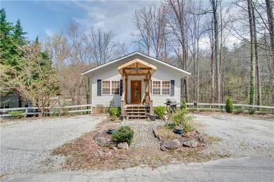 Rabun County Single Family Home For Sale: 33 Bulldog Lane