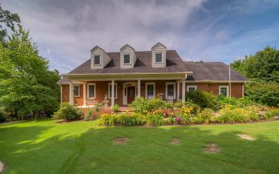 Ellijay Single Family Home For Sale: 57 Jacob Hunter Lane