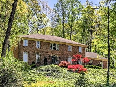 Sandy Springs Single Family Home For Sale: 125 River Landing SE