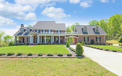 Lumpkin County Single Family Home For Sale: 956 McDonald Road