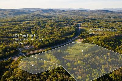 Habersham County Commercial For Sale: 1276 Tom Born Road