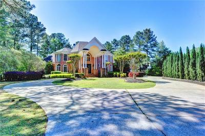 Johns Creek Single Family Home For Sale: 3028 Castle Pines Drive