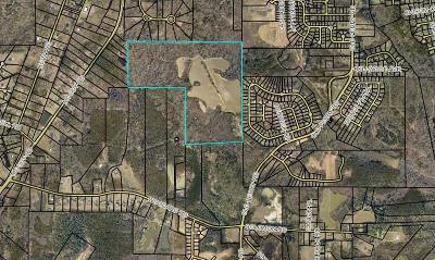 Residential Lots & Land For Sale: 227 Wilson Road