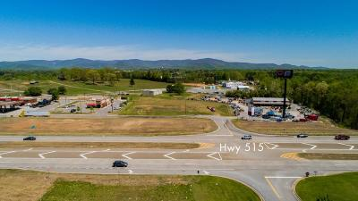 Pickens County Commercial For Sale: 4 Hazel Mosley Drive E