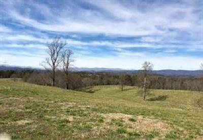 Dawsonville Residential Lots & Land For Sale: 4191 Sweetwater Juno Road