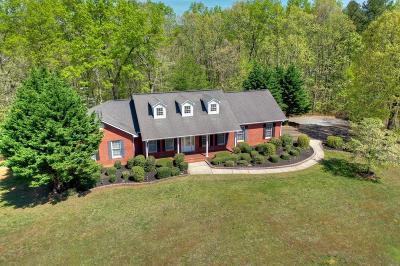 Ellijay Single Family Home For Sale: 309 Leonard Evans Road