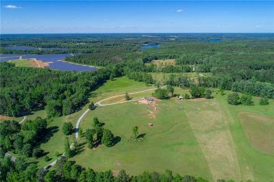 Walton County Single Family Home For Sale: 4504A Hawkins Academy Road